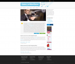 Drupal Theme - Shaken not stirred